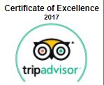 trip advisor1